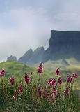 Skye mountains stock photos
