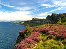 Skye, roca 02 de la falda escocesa Imagen de archivo