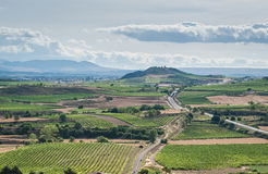 A skyine of vineyards in Rioja, SPain Royalty Free Stock Photo
