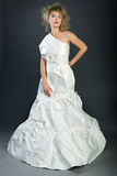 Skyla över brister klänningen Royaltyfri Bild