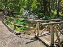 Skyla vattenfallet i den Szalajka dalen, Ungern Royaltyfria Bilder