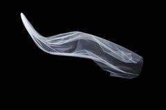 Skyler vitt brud- för bröllop isolerat på svart bakgrund royaltyfria bilder