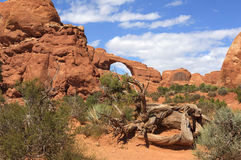 Skyline Arch in Arches National Park Royalty Free Stock Photography