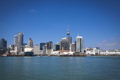 Skyline of Auckland Stock Images