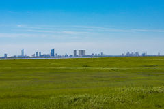 Skyline Beyond the Marsh. City skyline is visible in the distance beyod the marches Stock Image