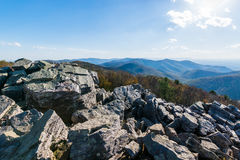 Skyline of The Blue Ridge Mountains in Virginia at Shenandoah Na. Tional Park During High Fall Color Stock Image