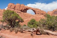 Skyline-Bogen im Bogen-Nationalpark Utah USA Lizenzfreies Stockbild