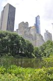 Skyline from Central Park in Midtown Manhattan from New York City in United States Royalty Free Stock Images