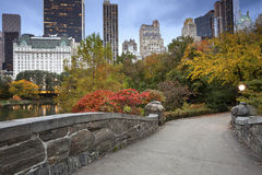 Skyline de Central Park e de Manhattan. Fotografia de Stock Royalty Free