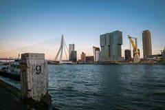 Skyline de Kop Van Zuid District com a ponte do Erasmus sobre o rio Mosa em Rotterdam, os Países Baixos imagem de stock