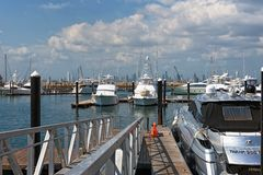 Skyline de Panam? da cidade do porto da ilha do perico na cal?ada de Amador imagens de stock royalty free