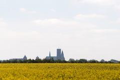 Skyline de Ribe no embaçamento Imagem de Stock