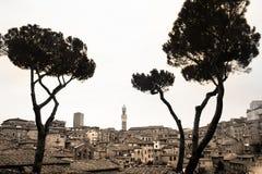 Skyline de Siena do Sepia fotografia de stock royalty free