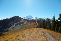 Skyline Divide trail leading up to Mount Baker. Royalty Free Stock Images