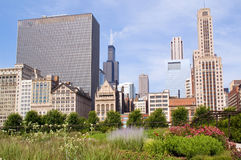 Skyline of Downtown Chicago Stock Photography