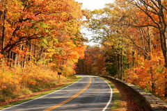 Skyline Drive. Shenandoah National Park in the Fall stock image