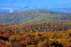 Skyline Drive Stock Photo