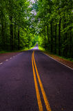 Skyline Drive in a heavily shaded forest area of Shenandoah National Park. Virginia Royalty Free Stock Images