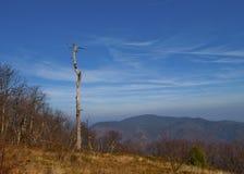 Skyline Drive Overlook. Timber Hollow Overlook on Skyline Drive in Virginia Royalty Free Stock Photos