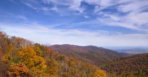 Skyline drive overlook. Orange fall foliage along the Skyline Drive in Shenandoah National Park, VA Stock Photos