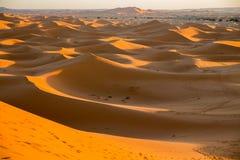 Skyline of dunes Royalty Free Stock Photography