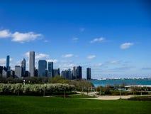 Skyline e Grant Park de Chicago foto de stock