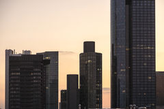 Skyline of Frankfurt with office buildings in sunset Royalty Free Stock Image