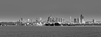 Skyline of Frankfurt in sunset royalty free stock photos