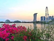 Singapore garden city Royalty Free Stock Photography