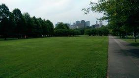 Skyline hinter dem Grün Stockbilder