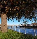 Skyline ireland da cidade da quintilha jocosa cityscap urbano da quintilha jocosa bonita foto de stock