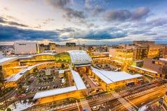 Skyline Kanazawa Japan Lizenzfreie Stockbilder