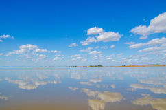 Skyline (landline)of wetland Stock Images