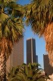 Skyline of Los Angeles, California through palm trees Stock Image