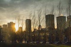 Skyline of Montreal royalty free stock photos