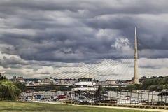 Skyline nebulosa de Belgrado com abrigo dos barcos em Sava River And The fotografia de stock royalty free