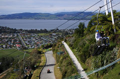 Skyline Rotorua Luge New Zealand Royalty Free Stock Images
