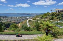 Skyline Rotorua Luge in Rotorua city - New Zealand. ROTORUA, NZL - JAN 18 2015:Visitors rides on Skyline Rotorua Luge.The famous Luge has 3 tracks of differing Royalty Free Stock Photo