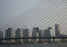 Skyline of Rotterdam Stock Photography