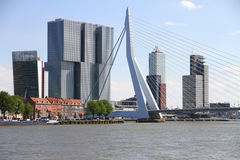 Skyline of Rotterdam with Erasmus bridge Stock Image