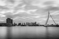 Skyline Rotterdam Stock Photos
