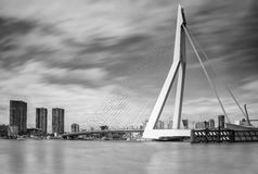 Skyline Rotterdam Stock Photography