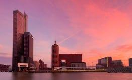 Skyline of Rotterdam Royalty Free Stock Image