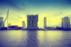 Skyline of Rotterdam, The Netherlands Royalty Free Stock Photos