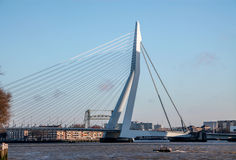 Skyline of Rotterdam, Erasmus bridge Stock Photography