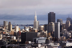 Skyline San Francisco, California, USA Royalty Free Stock Images