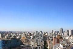 Skyline of Sao Paulo Royalty Free Stock Photos