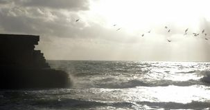 Skyline seascape with flying sea-gulls and ancient wall stock footage