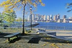Skyline Seen From Park, Boston, Massachusetts Stock Photography