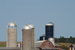 Skyline of Silos. A number of silos dot the sky towering over a barn Royalty Free Stock Photography